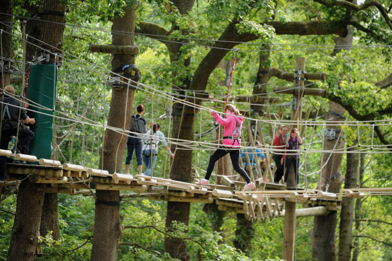 image of children on the Treetop Trek course at Brockhole on Windermere