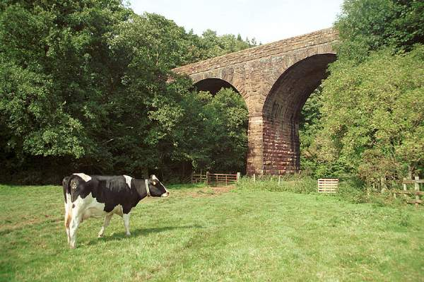 Crowdundle Viaduct..