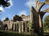 Calder Abbey Ruins and Mansion