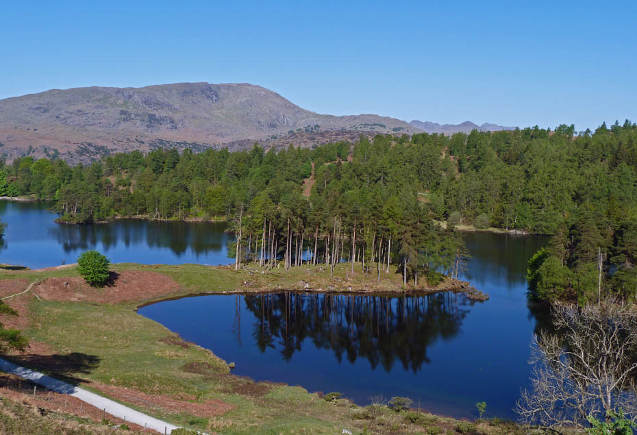 Tarn hows visit cumbria for How s the fishing