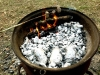 The fire pit / barbecue