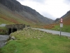 At the foot of Honister pass on the Buttermere side