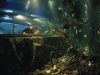 Newby Bridge - Aquarium of the Lakes