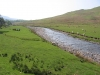 An infant River Eden in the Mallerstang Valley.
