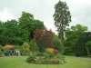 Winderwath Gardens - Temple Sowerby