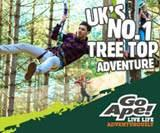 Go Ape Whinlatter and Grizedale Forest