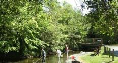 The stream and bridge by Brook House Family Friendly Holiday Cottages