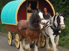 image of a horse drawn traditional gypsy caravan in cumbria