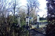 image of the wild bird feeder at Kendal webcam