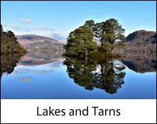 image of pine trees on an island reflected in derwentwater lake which is an image link to the lakes and tarns to visit in the lake district and cumbria page