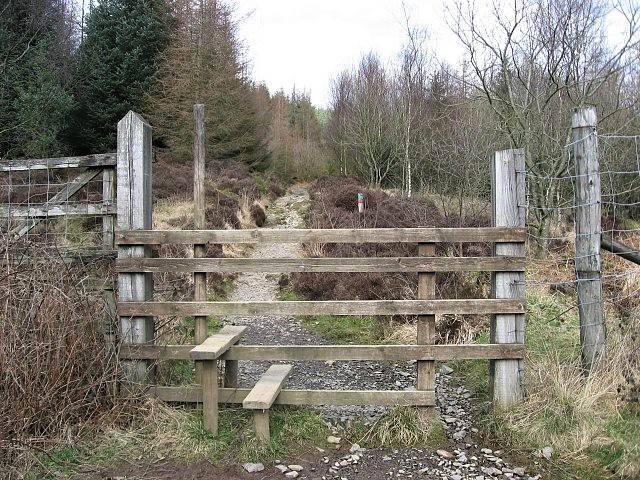 image of a gate at the start of a walking trail at grizedale forest