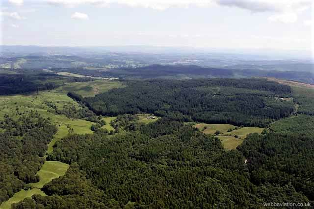an aerial image of grizedale forest in the lake district