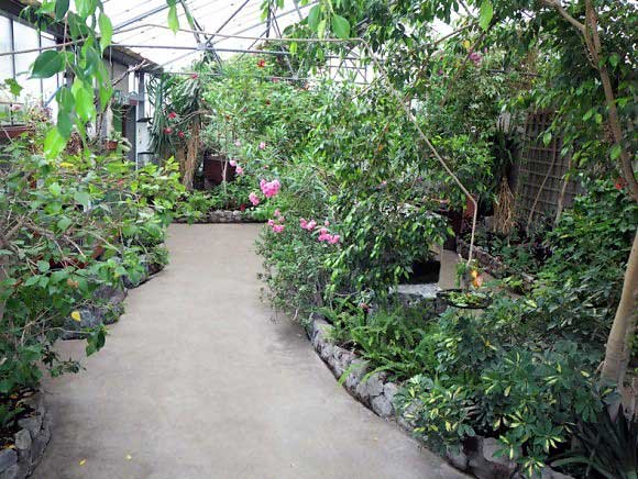 image of the inside of the butterfly hall at the lakeland wildlife oasis