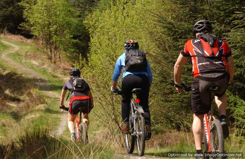 image of 3 people on mountain bikes on one of the bike trails at grizedale forest in the lake district