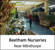 image of the inside of a garden centre and some shoppers at beetham nurseries at near milnthorpe in cumbria