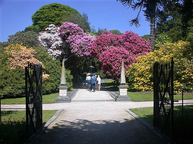 image of Holker Hall gardens near Cartmel in the Lake District