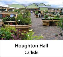 image of trays of plants for sale at houghton hall garden centre in carlisle