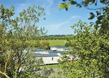 an images of holiday caravans and lodges in the trees at holmrook holiday park in the western lake district
