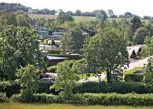 an image of holiday lodges and trees at wild rose holiday park in the eden valley in cumbria
