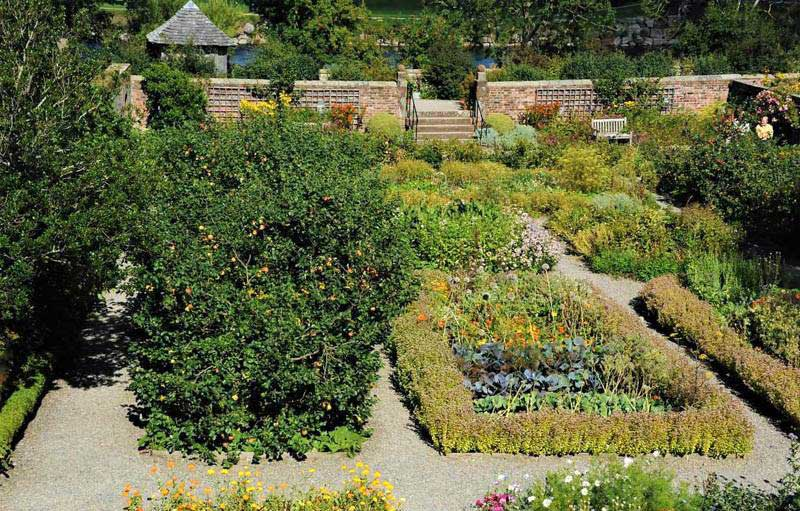 image of the restored gardens at wordsworth house in cockermouth