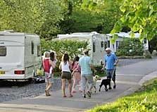 image of caravans at hill of oaks lake district camping and caravan sites