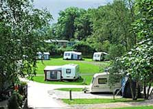 image of caravans and trees at a lake district caravan park and campsite