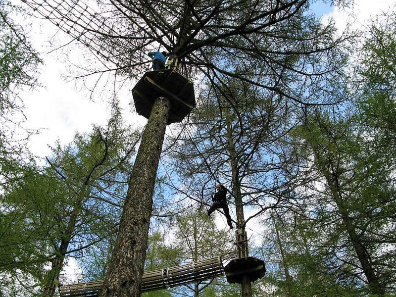image of people in the trees at Go Ape at Whinlatter Visitor Centre near Keswick