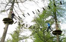 image of people at Go Ape at Whinlatter
