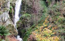 image of Spout Force