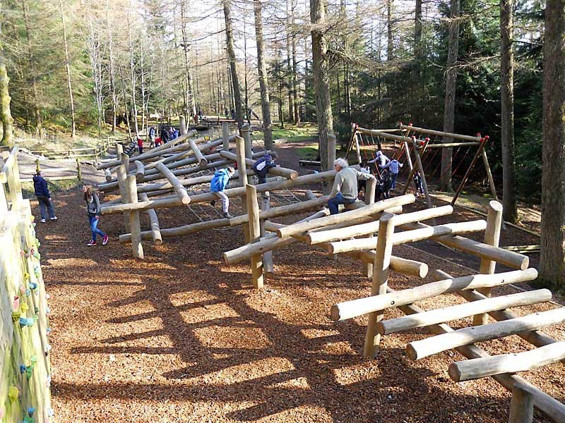 image of children playing on wildplay at Whinlatter Visitor Centre in the Lake District