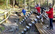 image of Wildplay at Whinlatter