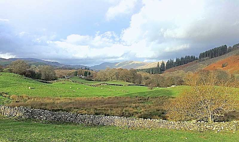 image of the view from Kentmere Farm Pods