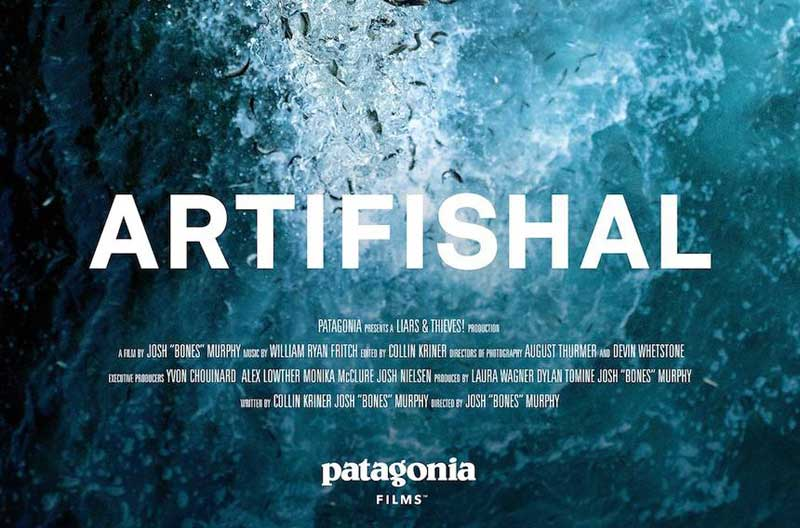 image of film poster for Artifishal showing at the Keswick Alhambra Cinema in the Lake District